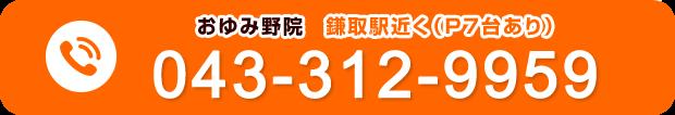 電話番号:043-312-9959