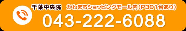 電話番号:043-222-6088